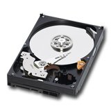 INFORTREND Hard Disk Server Enterprise SATAII, 7200RPM, 2TB HDD (no MUX board), Retail