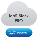 Black Professional - Virtual Server based on VMware vCloud Platform,with following specifications: 4 x vCPU, 8GB of RAM,200GB Bronze Storage Disk, Vmware licence included,LINUX OS,coverage period: 1month