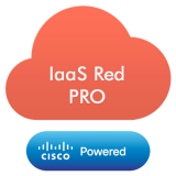 Red Professional - Virtual Server based on Open Stack Platform,with following specifications: 4 x vCPU, 8GB of RAM,200GB Bronze Storage Disk,LINUX OS,coverage period: 1month