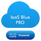 Blue Professional - Virtual Server based on Microsoft Cloud Platform,with following specifications: 4 x vCPU, 7GB of RAM,120GB Bronze Storage Disk,LINUX OS,coverage period: 1month