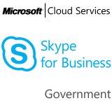 MICROSOFT Skype, Business, Government, VL Subs., Cloud, 1 user, 1 year