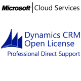 MICROSOFT Dynamics CRM Online Professional Direct Support, VL Subs., Cloud, Single Language, 1 user, 1 year