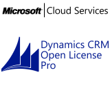 MICROSOFT Dynamics CRM Online Professional, VL Subs., Cloud, Single Language, 1 user, 1 year