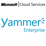 MICROSOFT Yammer Enterprise, VL Subs., Cloud, Single Language, 1 user, 1 year